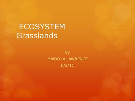 ECOSYSTEM Grasslands by MAKAYLA LAWRENCE 6/2/11 Grassland facts  The climate typically consists of warm, wet summers followed by cold, dry winters with.