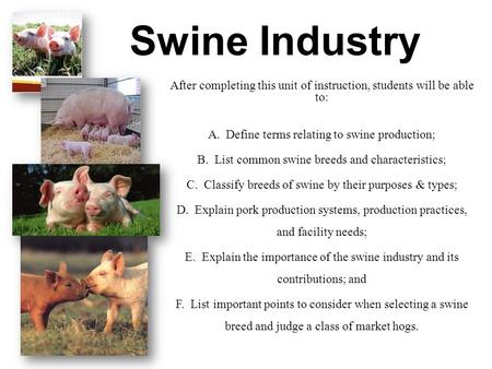 Swine Industry After completing this unit of instruction, students will be able to: A. Define terms relating to swine production; B. List common swine.