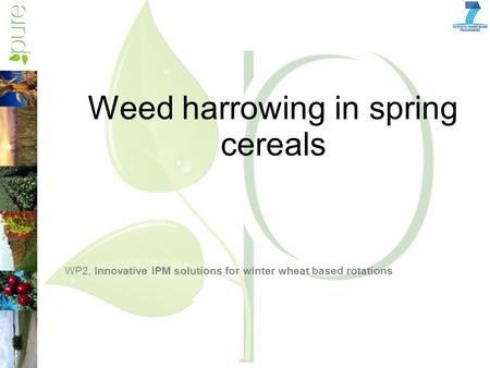 Weed harrowing in spring cereals WP2, Innovative IPM solutions for winter wheat based rotations.