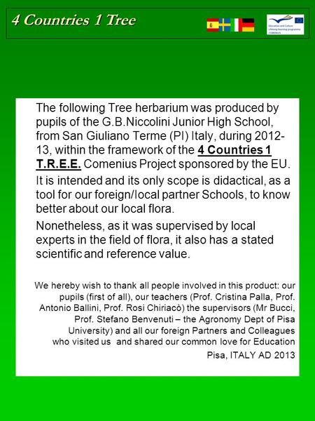 4 Countries 1 Tree The following Tree herbarium was produced by pupils of the G.B.Niccolini Junior High School, from San Giuliano Terme (PI) Italy, during.