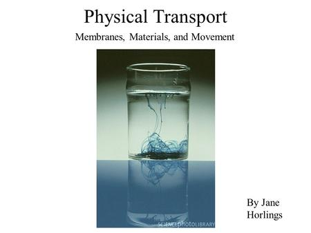 Physical Transport Membranes, Materials, and Movement By Jane Horlings.