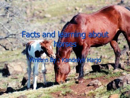 Facts and learning about horses Written By : Kandelyn Harjo.