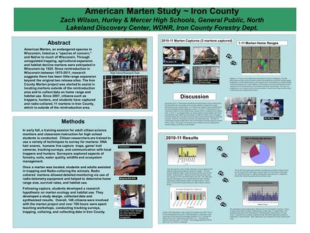 American Marten Study ~ Iron County Zach Wilson, Hurley & Mercer High Schools, General Public, North Lakeland Discovery Center, WDNR, Iron County Forestry.