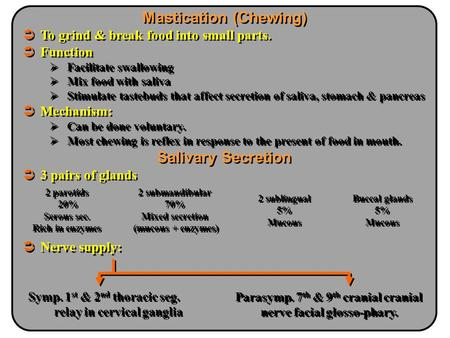 Mastication (Chewing) Salivary Secretion