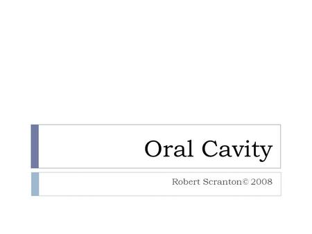 Oral Cavity Robert Scranton© 2008. The Tissues Lining Mucosa Masticatory Mucosa  NKSS (nonkeratinized stratified squamous)  Lamina Propria- loose CT.