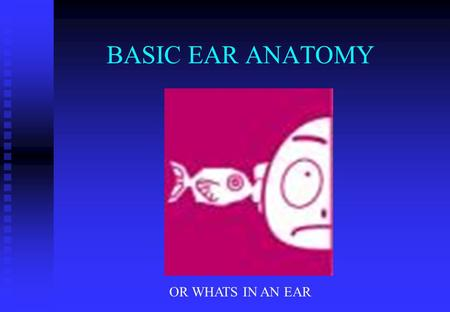 BASIC EAR ANATOMY OR WHATS IN AN EAR. BASIC EAR ANATOMY EXPECTED OUTCOMES EXPECTED OUTCOMES  TO UNDERSTAND THE HEARING MECHANISM  TO BE ABLE TO IDENTIFY.