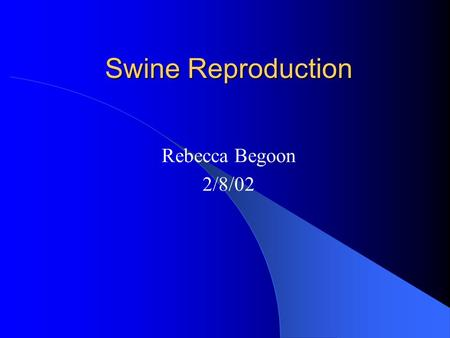 Swine Reproduction Rebecca Begoon 2/8/02. What is the point? Why are we learning about swine reproduction? We need to breed the gilts in the barn We will.