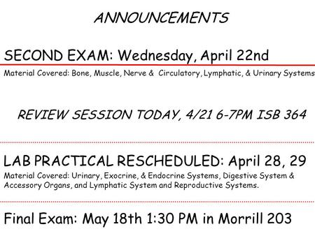ANNOUNCEMENTS SECOND EXAM: Wednesday, April 22nd Material Covered: Bone, Muscle, Nerve & Circulatory, Lymphatic, & Urinary Systems REVIEW SESSION TODAY,