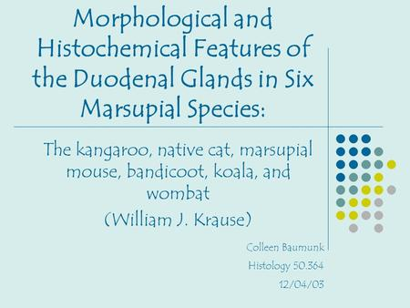 Morphological and Histochemical Features of the Duodenal Glands in Six Marsupial Species: The kangaroo, native cat, marsupial mouse, bandicoot, koala,