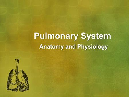 Pulmonary System Anatomy and Physiology