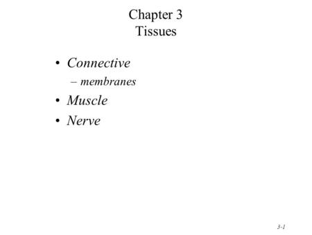 Chapter 3 Tissues Connective membranes Muscle Nerve.