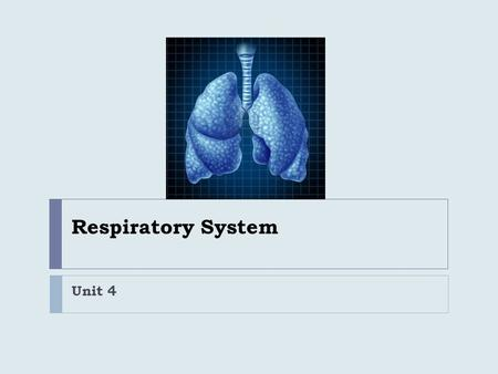 Respiratory System Unit 4. Review  What is the difference between Ventilation and Respiration?  How are External and Internal Respiration different?