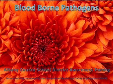 Bloodborne Pathogens awareness training. knowledgeconfidence Power to perform successfully in a real situation.