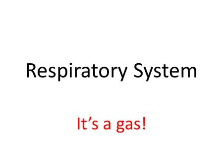 Respiratory System It's a gas!. Respiratory System Pathway of Air: Nose/mouth Nasal/oral cavities Pharynx *Epiglottis Larynx Trachea Bronchi Bronchioles.