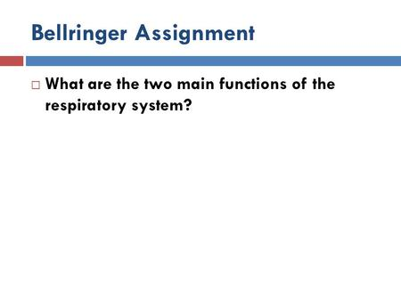 Bellringer Assignment  What are the two main functions of the respiratory system?