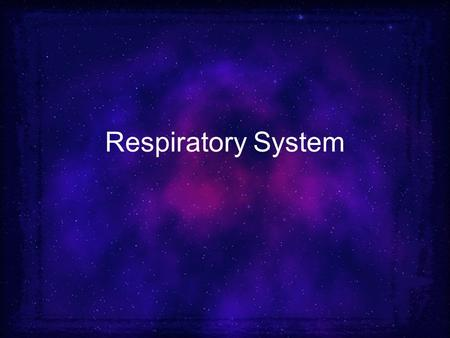 Respiratory System. Lungs & Air passages Responsible for taking in oxygen and removing carbon dioxide (CO 2 ) 4 – 6 minute supply of oxygen Includes: