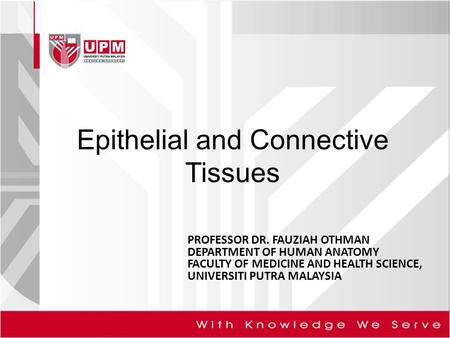 Epithelial and Connective Tissues PROFESSOR DR. FAUZIAH OTHMAN DEPARTMENT OF HUMAN ANATOMY FACULTY OF MEDICINE AND HEALTH SCIENCE, UNIVERSITI PUTRA MALAYSIA.