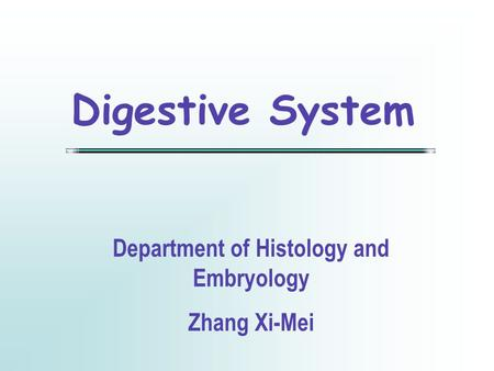 Digestive System Department of Histology and Embryology Zhang Xi-Mei.