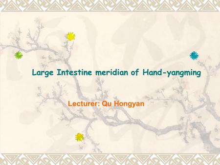 Lecturer: Qu Hongyan Large Intestine meridian of Hand-yangming.