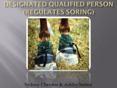 Sydney Christen & Ashley Sutton. Soring involves the intentional infliction of pain to a horse's legs or hooves in order to force the horse to perform.