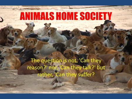 ANIMALS HOME SOCIETY The question is not, 'Can they reason?' nor, 'Can they talk?' but rather, 'Can they suffer?
