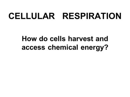 CELLULAR RESPIRATION How do cells harvest and access chemical energy?