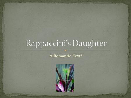 "A Romantic Text?. Rappaccini represents The Age of Reason Sees Giovanni and Beatrice as specimens He is described as ""taking merely a speculative, not."