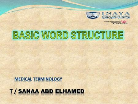 Medical terminology T / sanaa abd elhamed