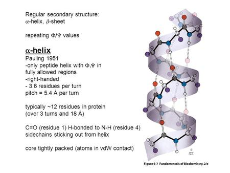 Regular secondary structure:  -helix,  -sheet repeating  values  -helix Pauling 1951 -only peptide helix with  in fully allowed regions -right-handed.