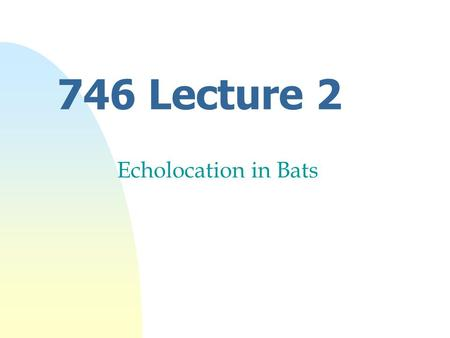 746 Lecture 2 Echolocation in Bats. Aim nOutline properties of sound nHunting behaviour of bats nTypes of Echolocation sounds nSpecialisation of u Ear.