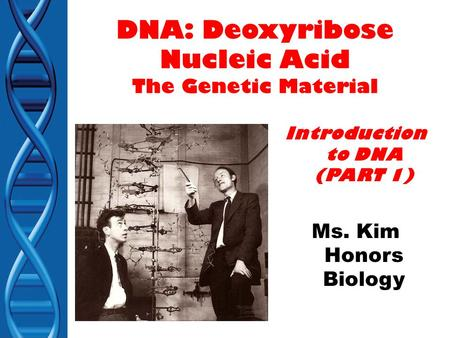 Essay on Nucleic Acid (For School and College Students) | Biology