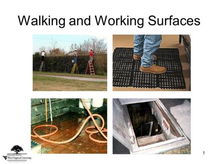 1 Walking and Working Surfaces. 2 Related Work Activities Working in a greenhouse Pruning trees Mowing lawns Trimming Carrying heavy loads Painting.