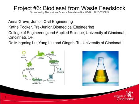 Project #6: Biodiesel from Waste Feedstock Sponsored by The National Science Foundation Grant ID No.: DUE-0756921 Anna Greve, Junior, Civil Engineering.