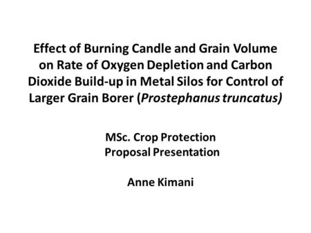 Effect of Burning Candle and Grain Volume on Rate of Oxygen Depletion and Carbon Dioxide Build-up in Metal Silos for Control of Larger Grain Borer (Prostephanus.