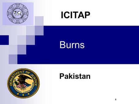 1 Burns Pakistan ICITAP. Learning Objectives Understand different types of burns Learn to identify degrees of burns Know First Aid treatment for burns.