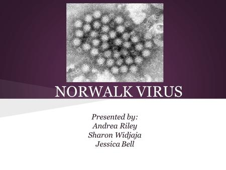 NORWALK VIRUS Presented by: Andrea Riley Sharon Widjaja Jessica Bell.