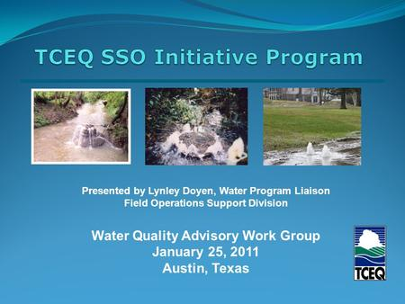 Presented by Lynley Doyen, Water Program Liaison Field Operations Support Division Water Quality Advisory Work Group January 25, 2011 Austin, Texas.
