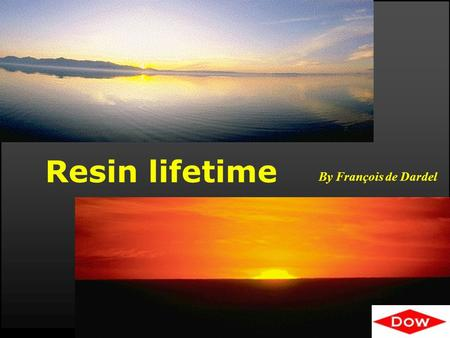 Resin lifetime By François de Dardel. © 2009 Dow Water & Process Solutions Lifetime 2 RESIN LIFETIME: HOW LONG WILL MY RESIN LAST ? Question 1 : How long.
