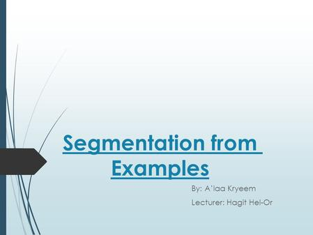 Segmentation from Examples By: A'laa Kryeem Lecturer: Hagit Hel-Or.