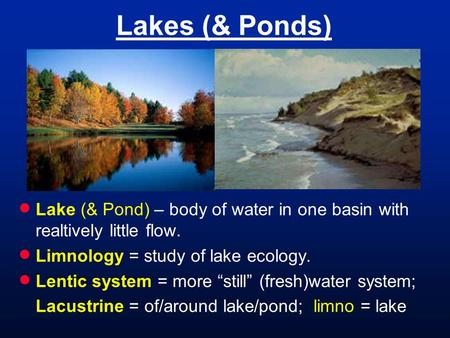 "Lakes (& Ponds)  Lake (& Pond) – body of water in one basin with realtively little flow.  Limnology = study of lake ecology.  Lentic system = more ""still"""