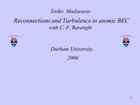1 Eniko Madarassy Reconnections and Turbulence in atomic BEC with C. F. Barenghi Durham University, 2006.