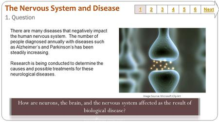 1. Question 1111 2222 3333 6666 5555 4444 Next Image Source: Microsoft Clip Art There are many diseases that negatively impact the human nervous system.