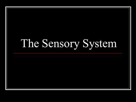 The Sensory System. Examining the sensory system provides information regarding the integrity of the Spinothalamic Tract, posterior columns of the spinal.