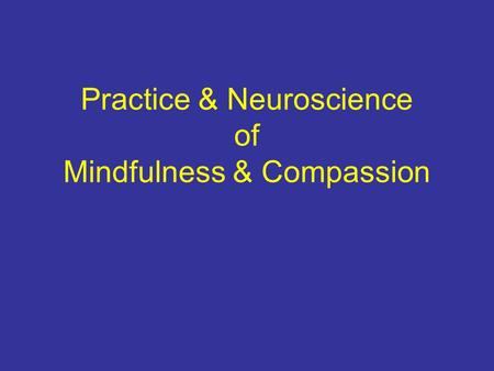 Practice & Neuroscience of Mindfulness & Compassion.