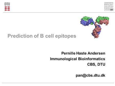 Prediction of B cell epitopes Pernille Haste Andersen Immunological Bioinformatics CBS, DTU
