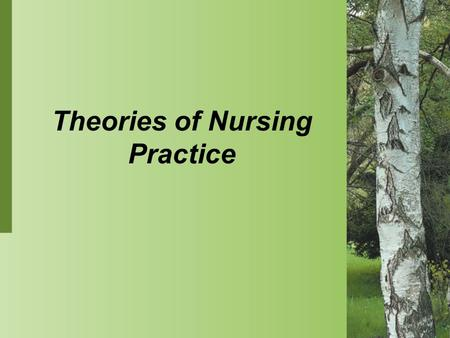 Theories of Nursing Practice