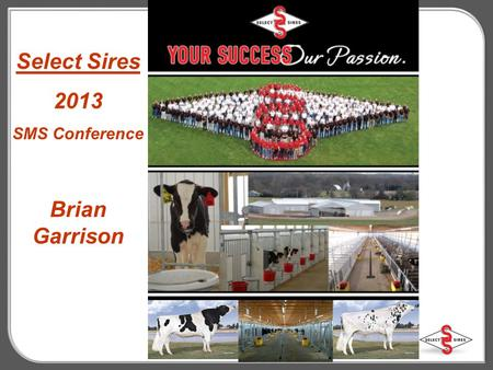 Select Sires 2013 SMS Conference Brian Garrison. The Best in Proven Red Genetics 7HO10000 Big Apple-Red +1917 TPI # 1 Red 7HO9555 CLUE *RC (FBI x SS)+1956.
