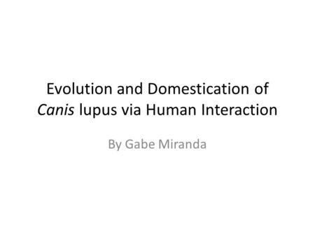 Evolution and Domestication of Canis lupus via Human Interaction By Gabe Miranda.