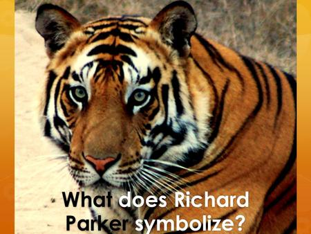 "What does Richard Parker symbolize?. Find your given extract in Chapter 92 by skim reading ""I heard a growl. I turned. RP was observing me from the lifeboat…giving."
