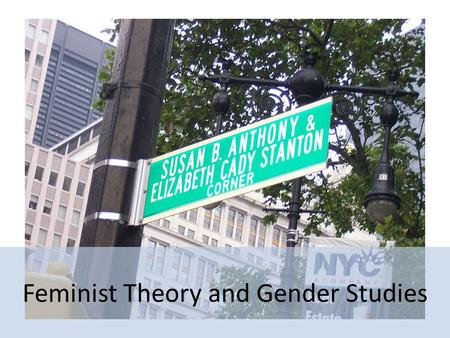 Feminist Theory and Gender Studies. Feminist Theory Arises from a social and political commitment to gender equality (social, political, economic, and.